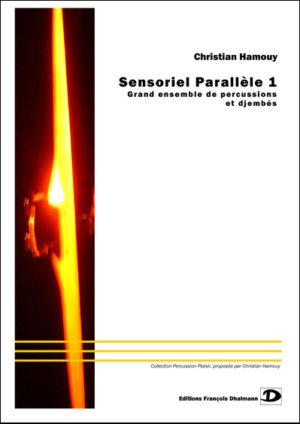 Sensoriel Parallèle – Christian Hamouy